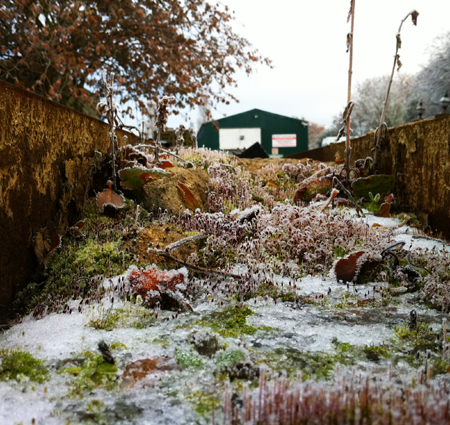 A miniature iceworld outside the Q&H stable